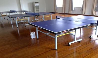 四川成都乒乓球训练基地木地板供应商